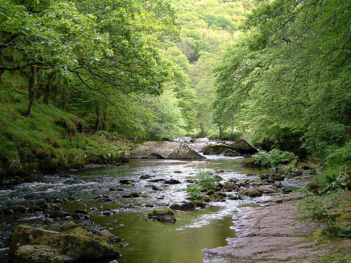 watersmeet